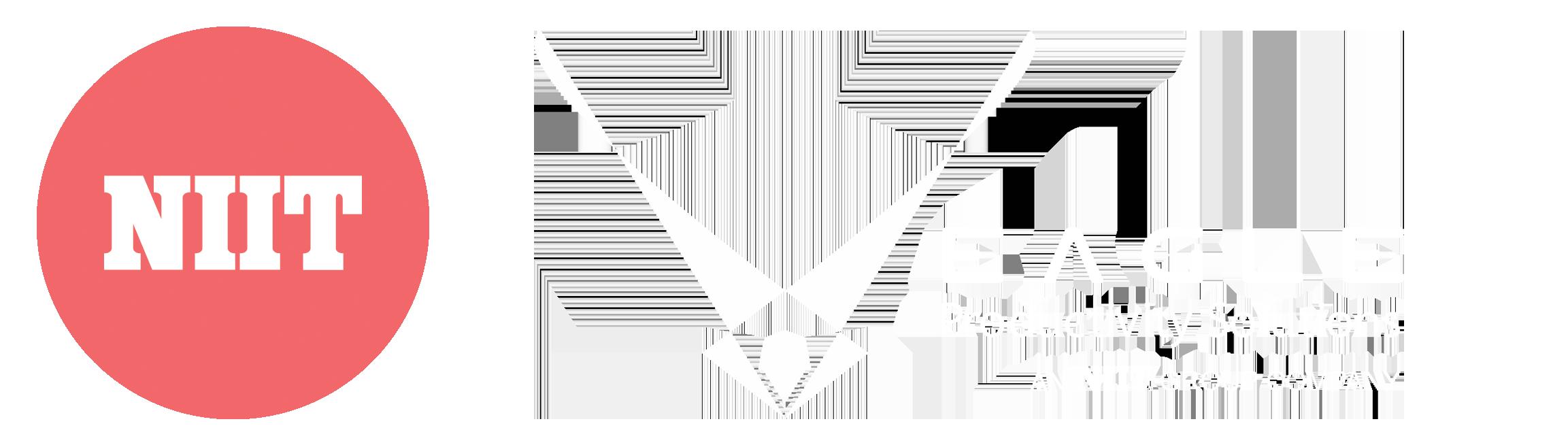 Stabilize_logo_eagle_horiz_white