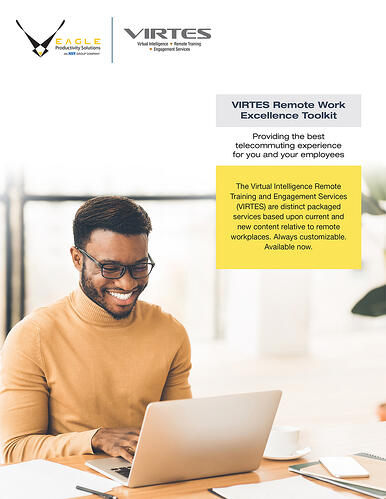 VIRTES Remote Work Excellence Toolkit